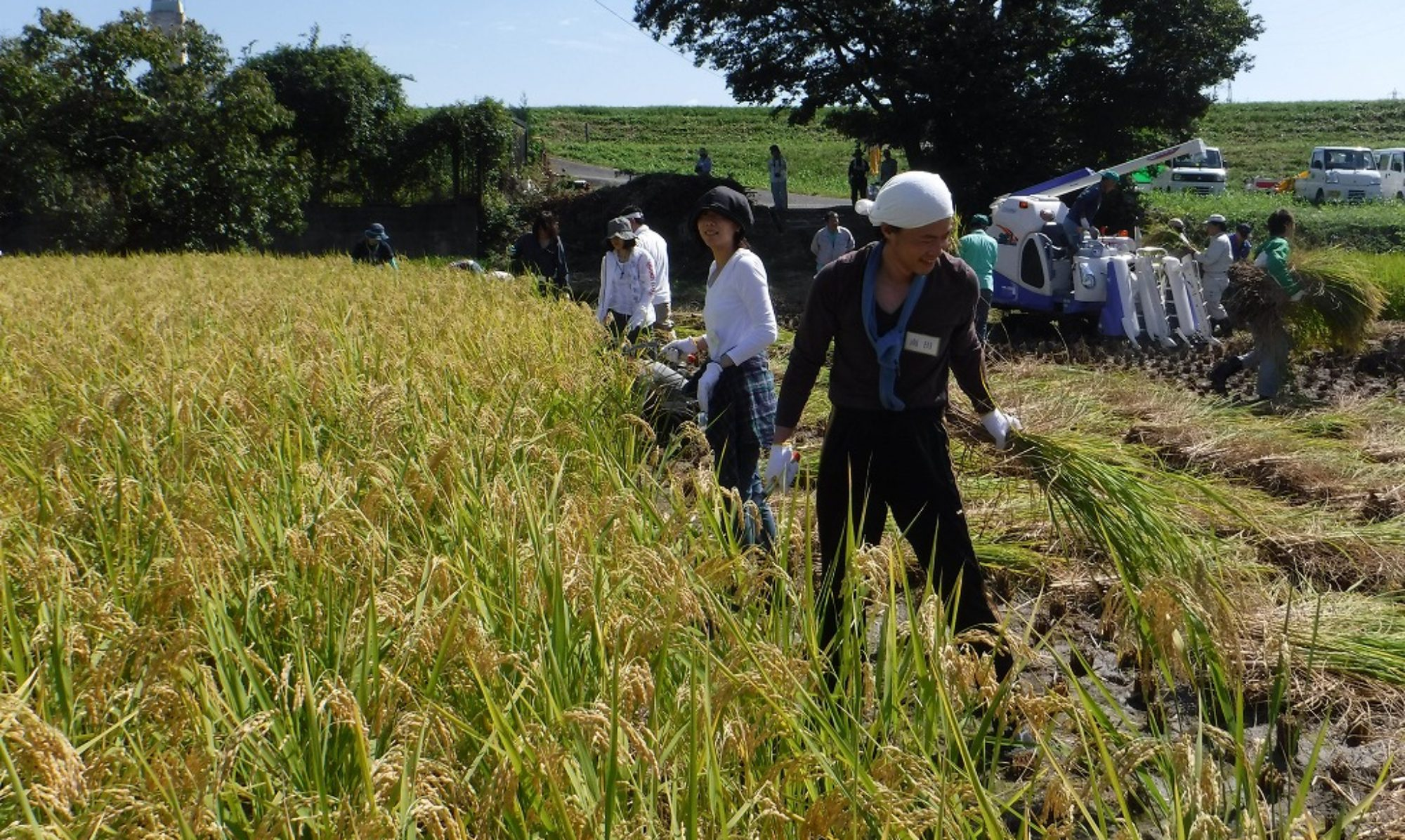 Kuramachi Project 2017 - Promoting Town of Fushimi with Paddy Fields and Sake Breweries